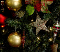 25311_38422_christmas-tree-star-background